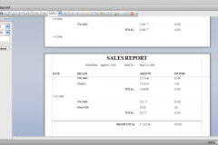 3Sales Report