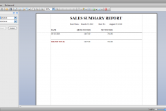 sales summary report